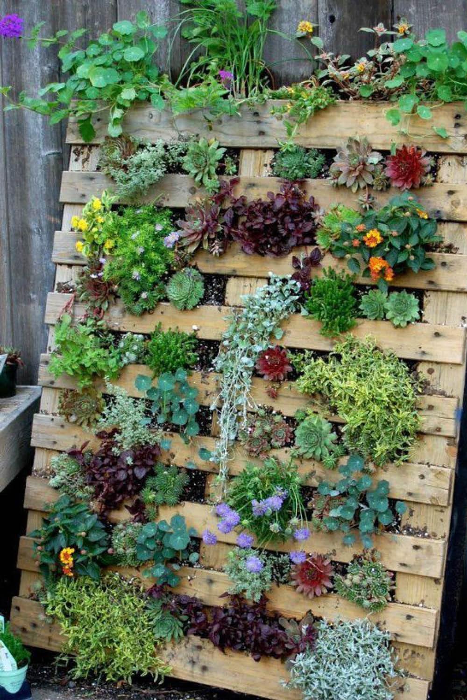 jardin vertical casero c mo hacer un jard n el blog de los mejores consejos y jardineria alicante 4 15 Ideas Para Crear Jardines Verticales Súper Bonitos