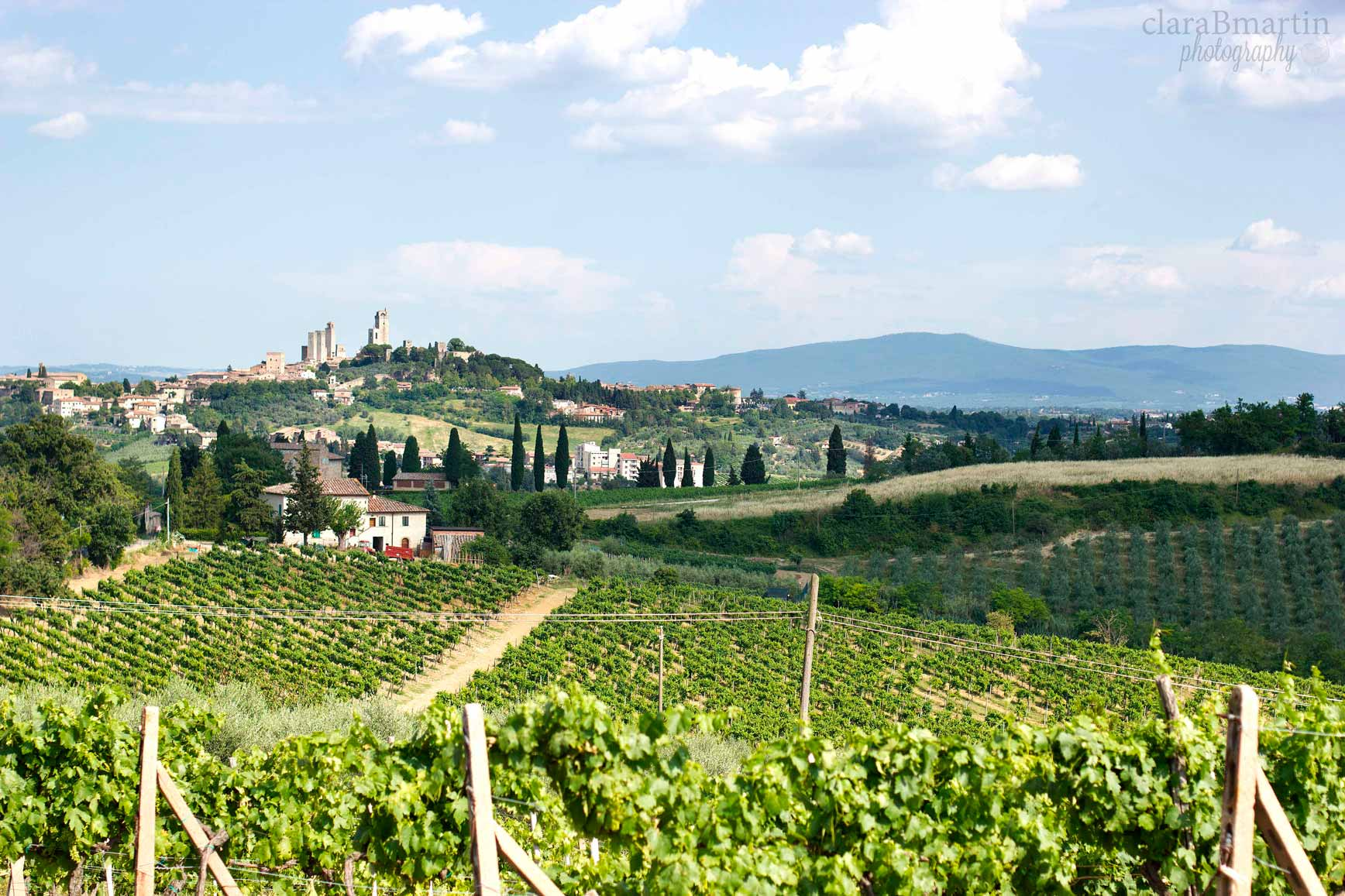 ToscanaclaraBmartin_11
