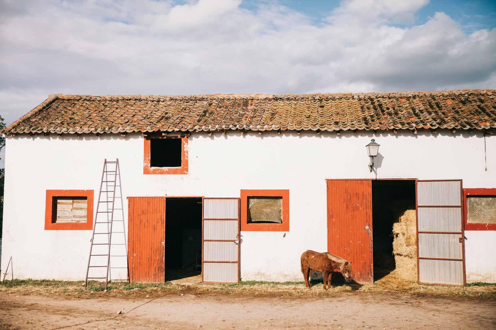 Ruta a Caballo - Caballos La Vereda_claraBmartin_47
