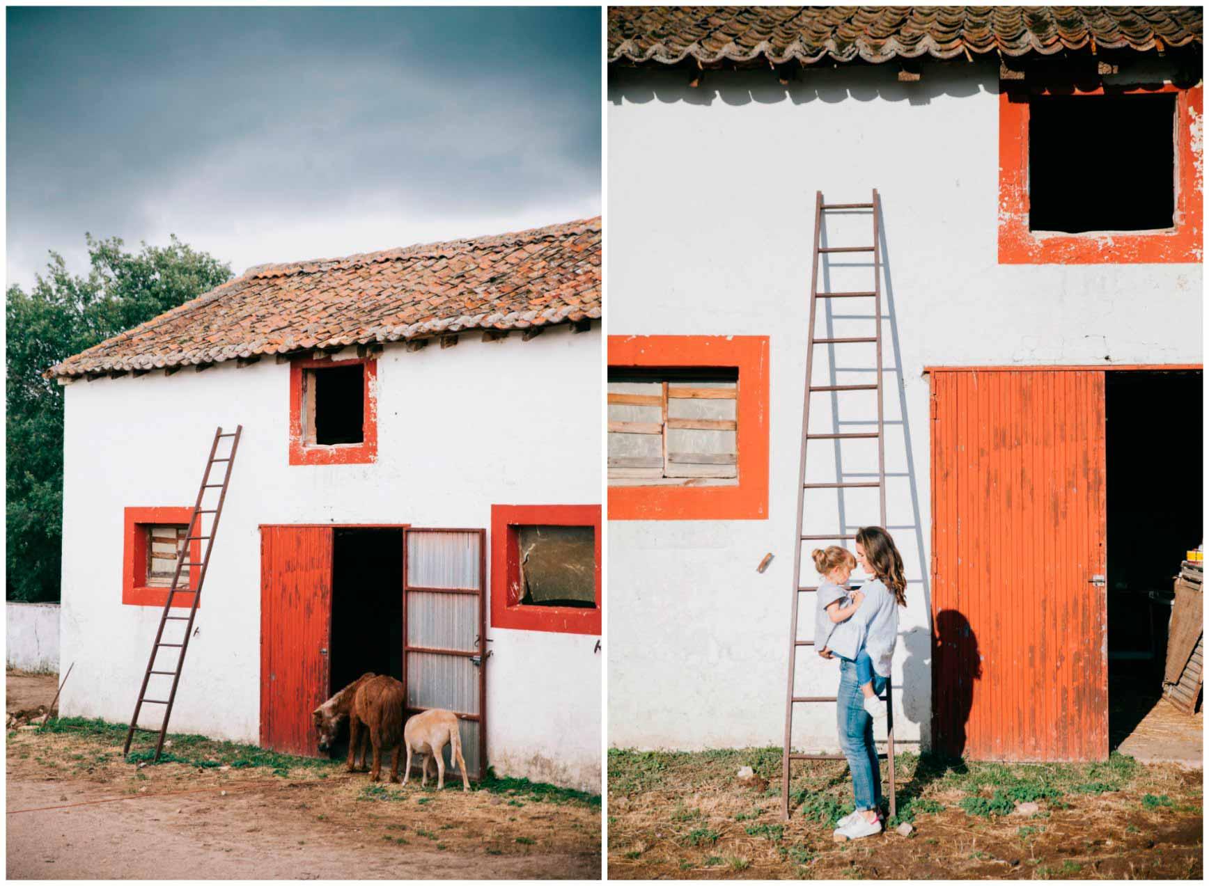 Ruta a Caballo - Caballos La Vereda_claraBmartin_53