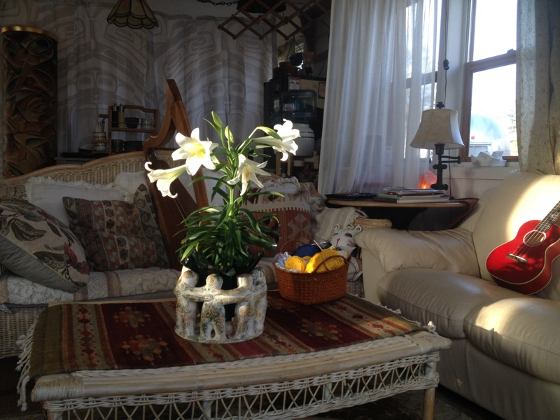 Easter lilies at sunset in Clarissa's music livingroom