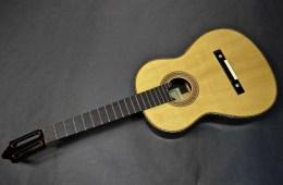 rodriguez-guitar