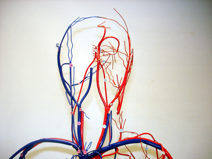 WIRE MODELS