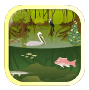 Ecosystem App for iPads iBiome-Wetland Exploration