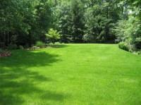 Fall Lawn Care Tips - CLC Landscape Design