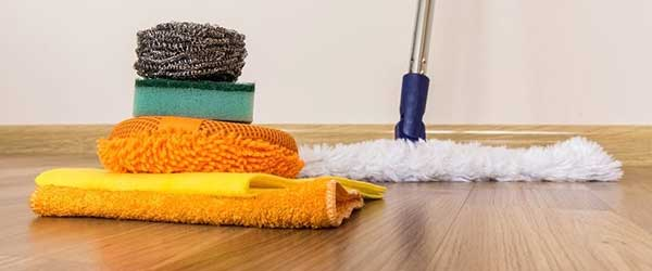 Can you make a million bucks in the house cleaning business