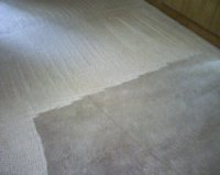 Photos Knoxville Carpet Cleaning Residential Commercial