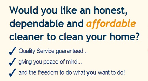 Professional Domestic Cleaning Near You Cleanserv Maids