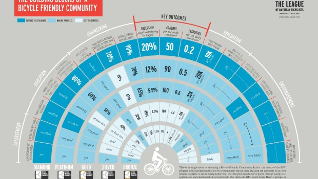 BFC-infographic
