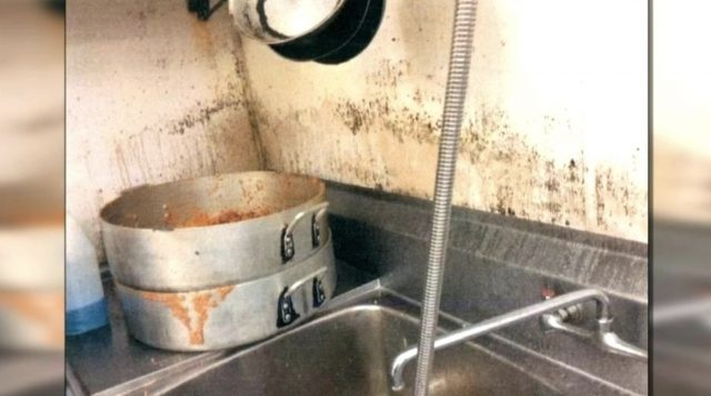 About The Black Mold In Your Dishwasher Is It Safe