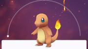 Pokemon Go… Attenborough-style!
