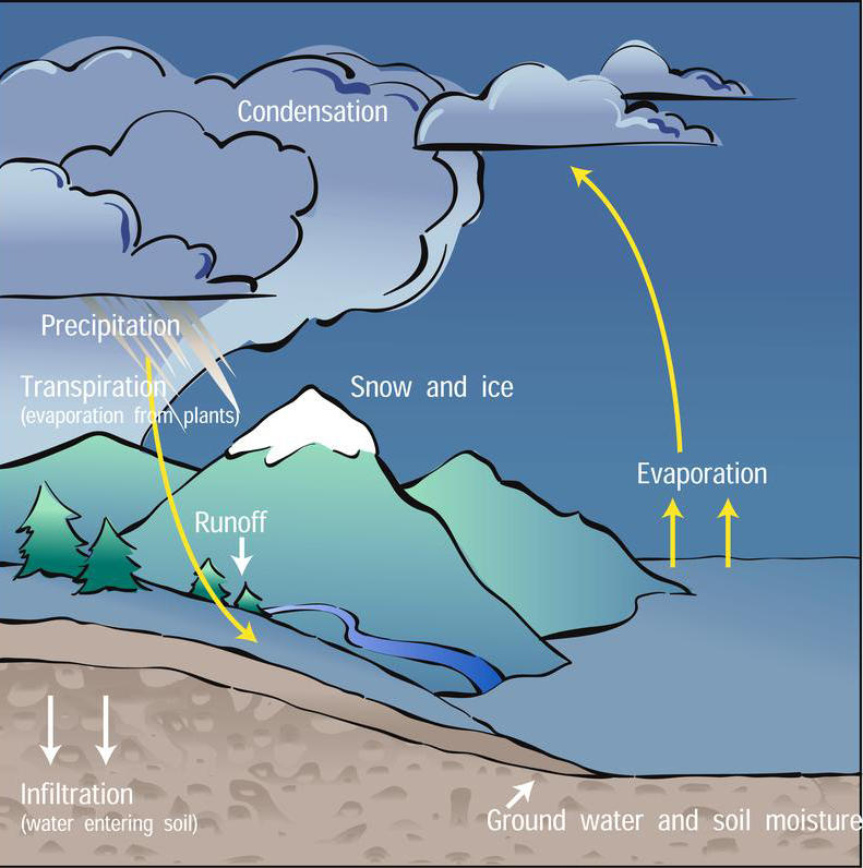 The Water Cycle North Carolina Climate Office