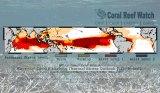 coralreefs-watchcollage-560