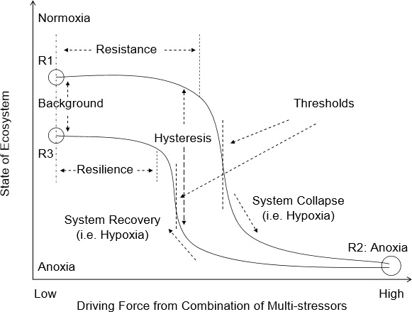 Conceptual diagram for the response of ecosystems to theconditions of dissolved oxygen in the coastal ocean, along the tra-jectories of normoxia to hypoxia/anoxia and vice versa, with hy-poxia as transitional state. In the figure R1, R2 and R3 representdifferent regime states of the ecosystem that can change from oneto another. In most cases, the ecosystem is affected by a combina-tion of multi-stressors with specific regional nature rather than byany single forcing, and the system response is not linear. The re-sistance, hysteresis, threshold, resilience and change in backgroundconditions are characters that dictate the response processes of theecosystem to the external forcing and/or pressure (e.g. either natu-ral and/or anthropogenic, or both), which is usually very dynamicin the coastal environment. When the system response passes overa threshold (e.g. from R1 to R2), a new ecosystem regime can bereached (i.e. regime shift); in the case of relief from external stres-sors, the recovery of the ecosystem will follow another pathway andeventually, can have a different background situation (i.e. R3). Thefigure is a modification based on the work by Tett et al., 2007, vande Koppel et al., 2009, and Kemp et al., 2009.