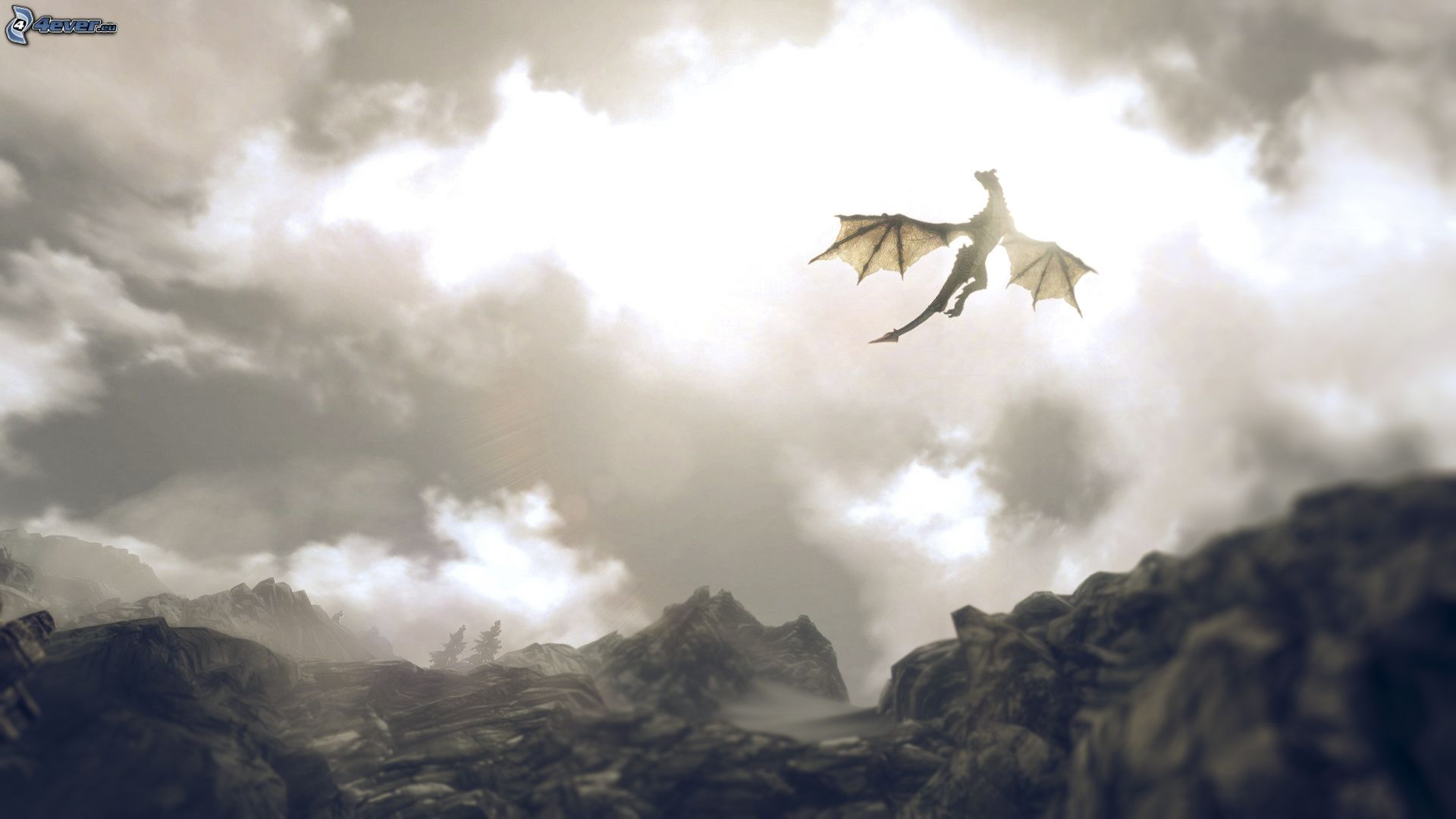 1080p Pretty Anime Girl Wallpaper Free Flying Dragon Download Free Clip Art Free Clip Art