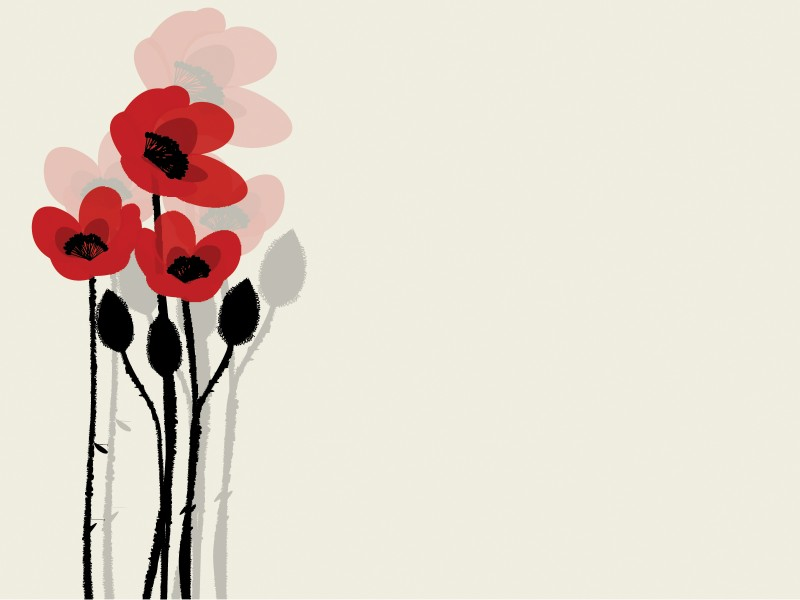 Summer Poppy Flowers Powerpoint Templates - Black, Flowers, Red