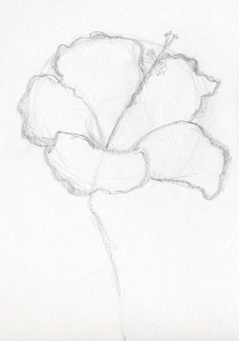 Free Drawing Of Flower, Download Free Clip Art, Free Clip Art on