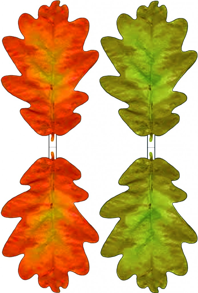 Green and Red Paper Oak Leaf Decoration - Rooftop Post Printables