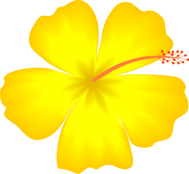 Free Hibiscus Flower Template, Download Free Clip Art, Free Clip Art