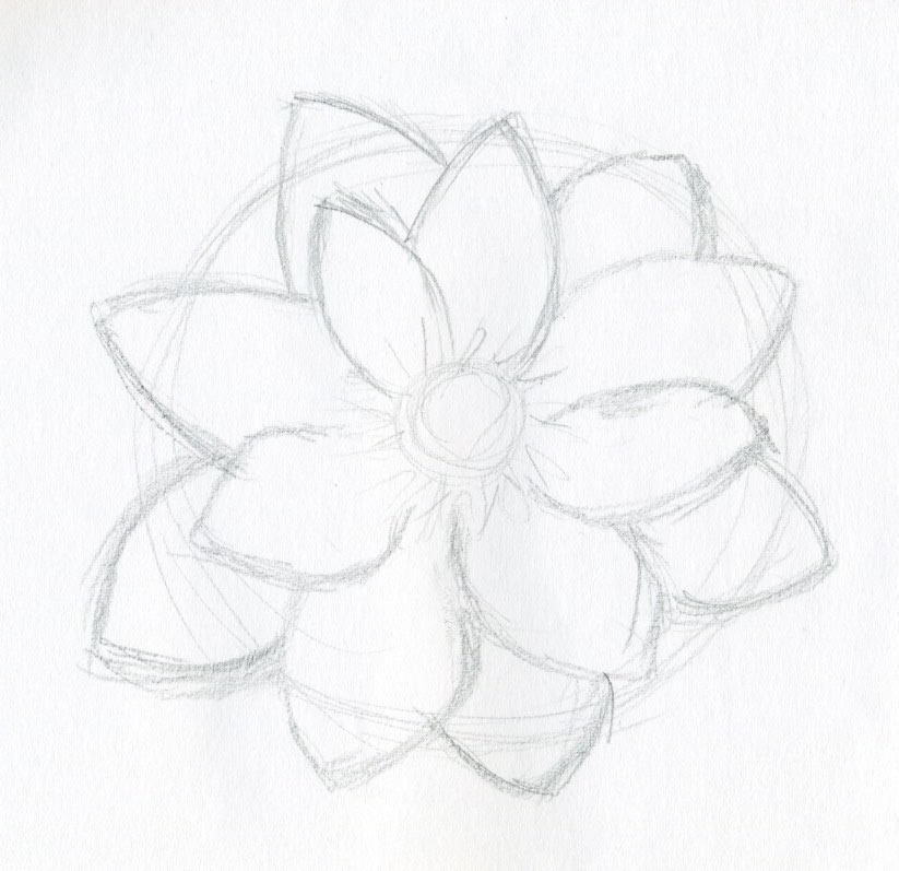 Free Flower Drawings, Download Free Clip Art, Free Clip Art on