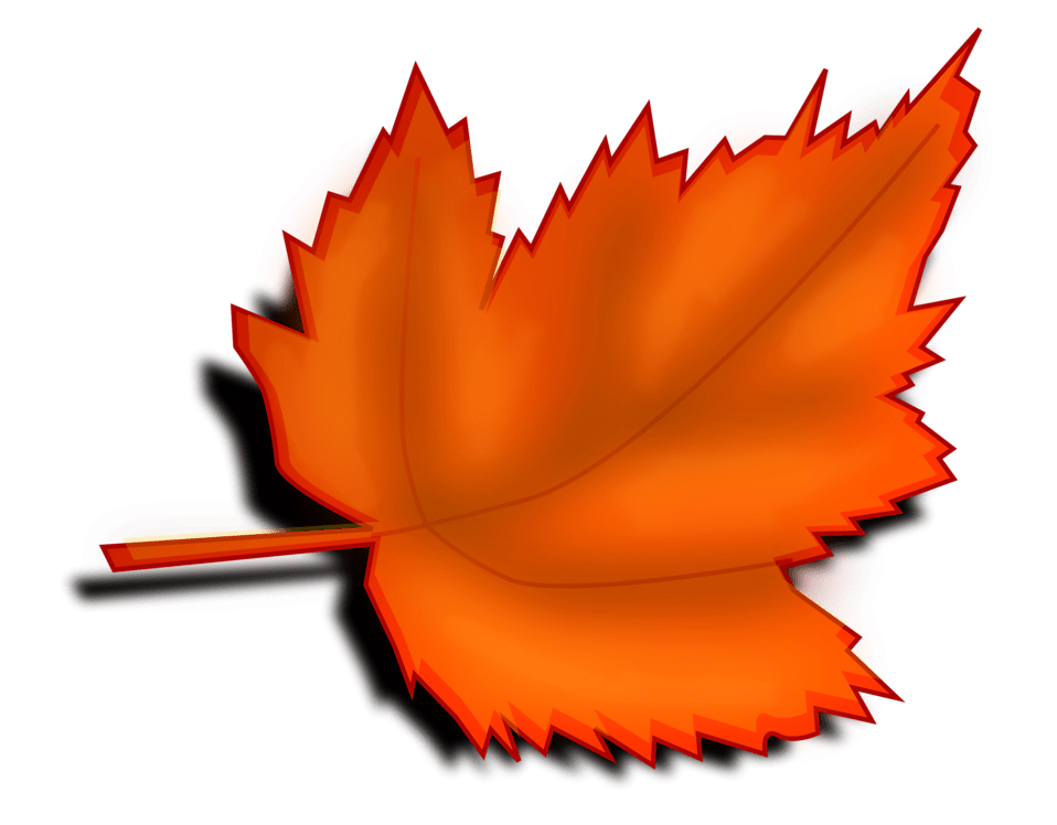 Fall Harvest Wallpaper Free Free Fall Borders Download Free Clip Art Free Clip