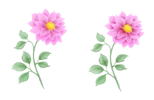 How To Draw A Flower Step By Step Beautiful Flower Drawing