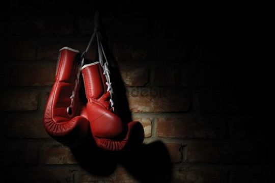 Animated Running Horse Wallpaper Free Boxing Gloves Download Free Clip Art Free Clip Art