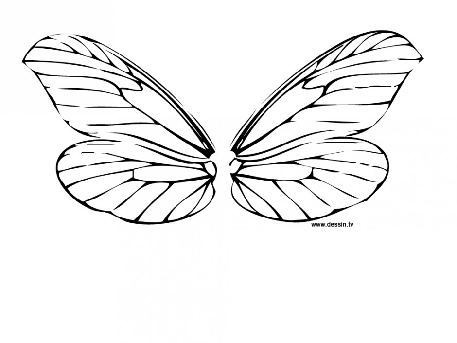 Download Printable Dragonfly Coloring Pages Of Animals Or