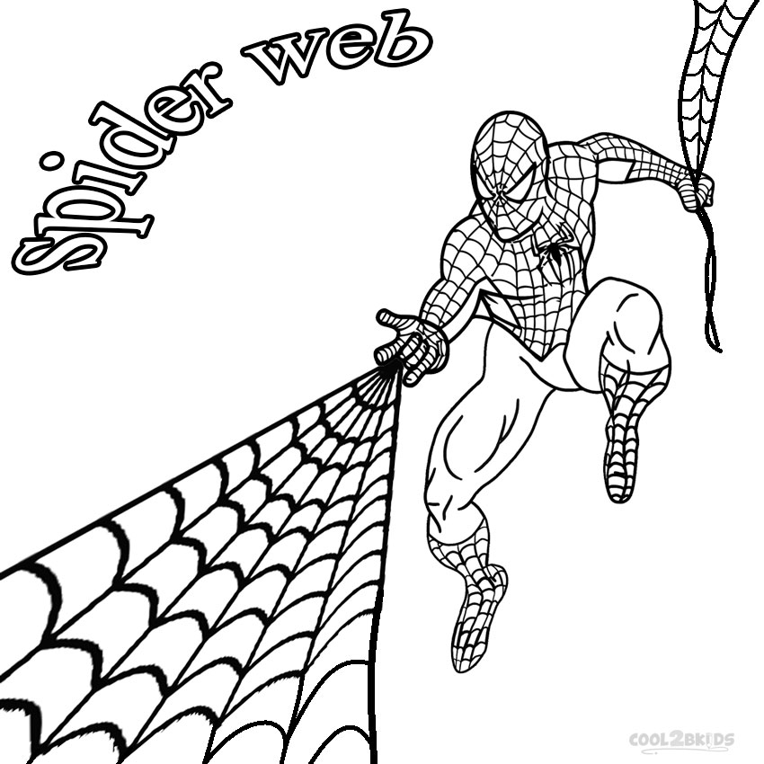 Free Spider Web Images Free, Download Free Clip Art, Free Clip Art