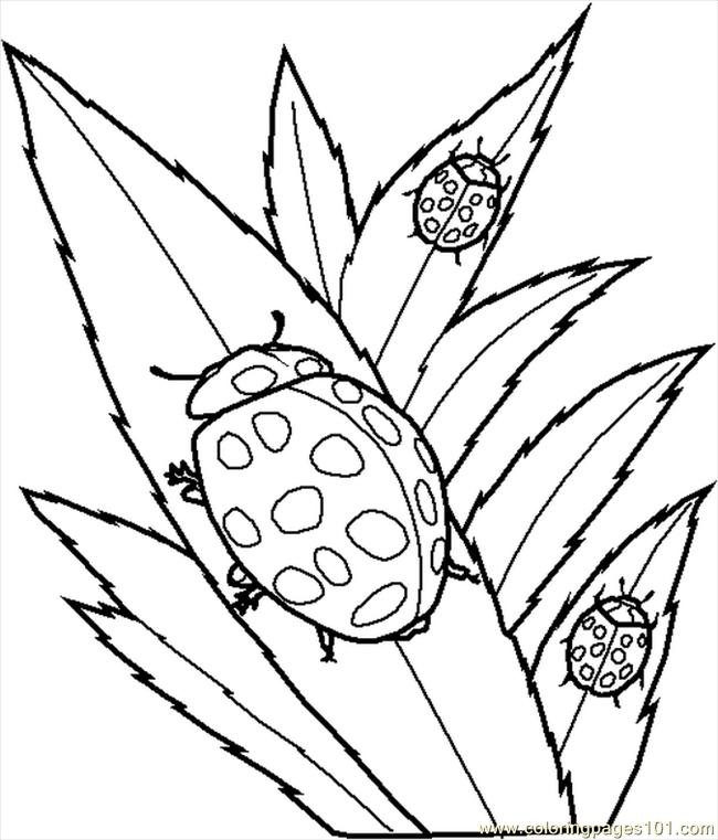 Free Create Your Own Coloring Book, Download Free Clip Art, Free