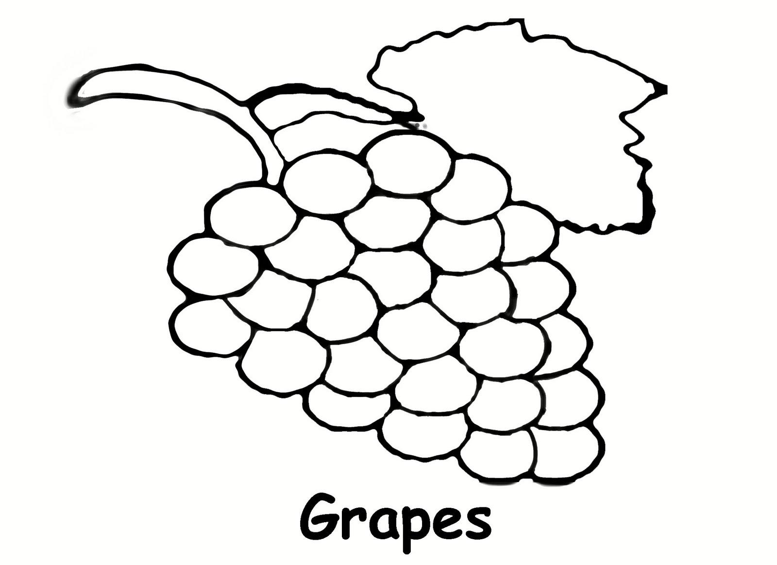 Grape Coloring Page - Democraciaejustica