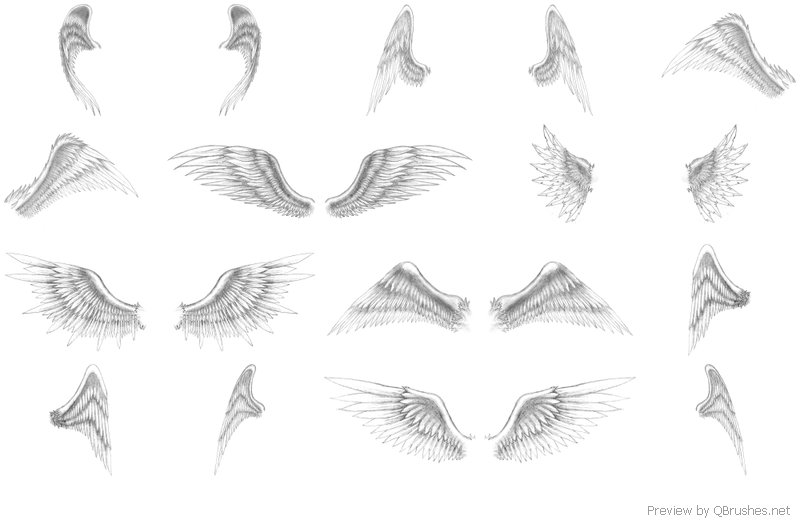 Free Angel Wings Download Free Clip Art Free Clip Art On