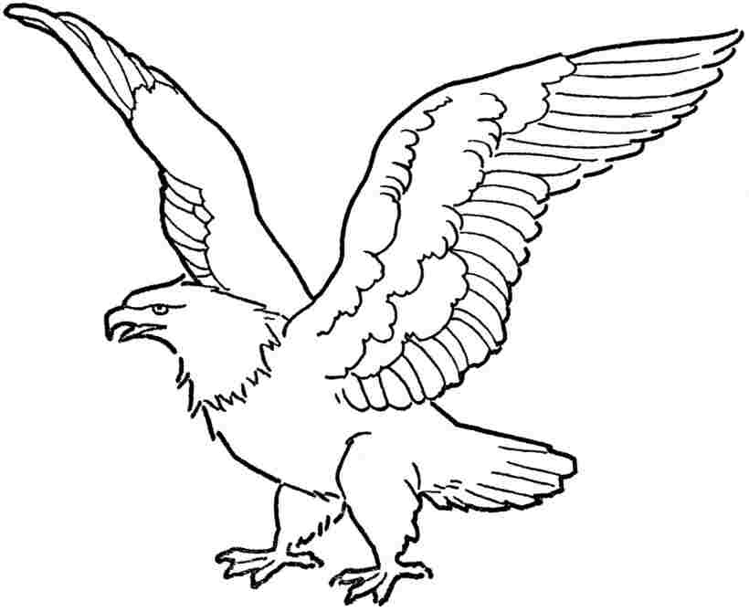 Free Printable Angel Wings, Download Free Clip Art, Free Clip Art on