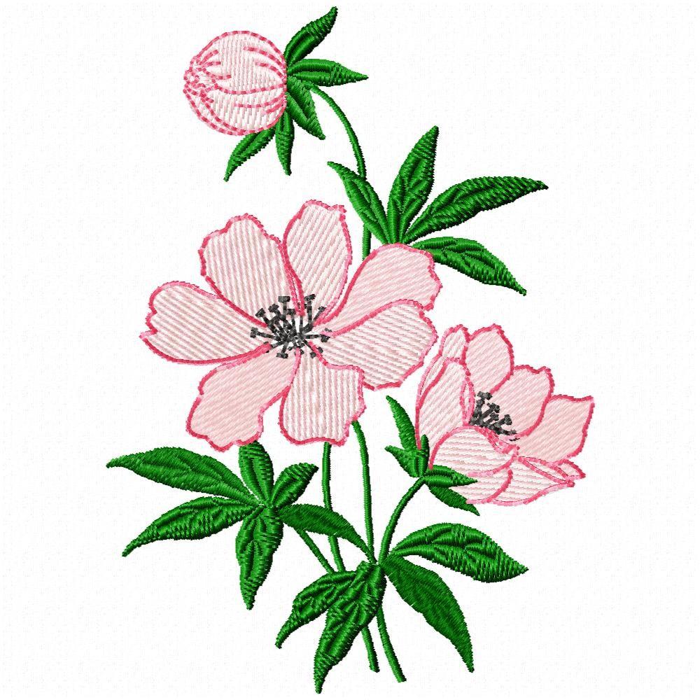 Cute Nail Arts Wallpaper Free Simple Flower Designs Download Free Clip Art Free
