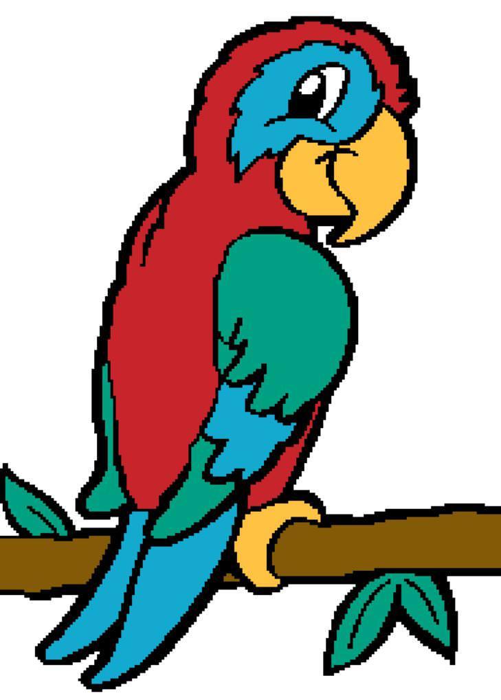 Cute Parakeet Wallpaper Free Parrot Pictures Cartoon Download Free Clip Art Free