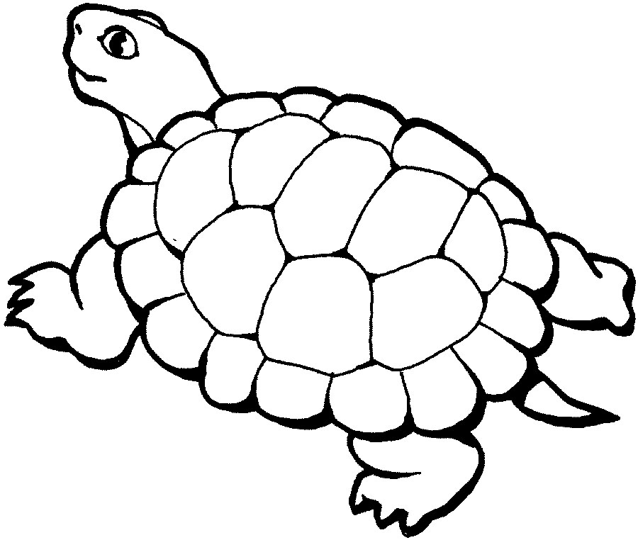 Free Free Zoo Animal Clipart, Download Free Clip Art, Free Clip Art