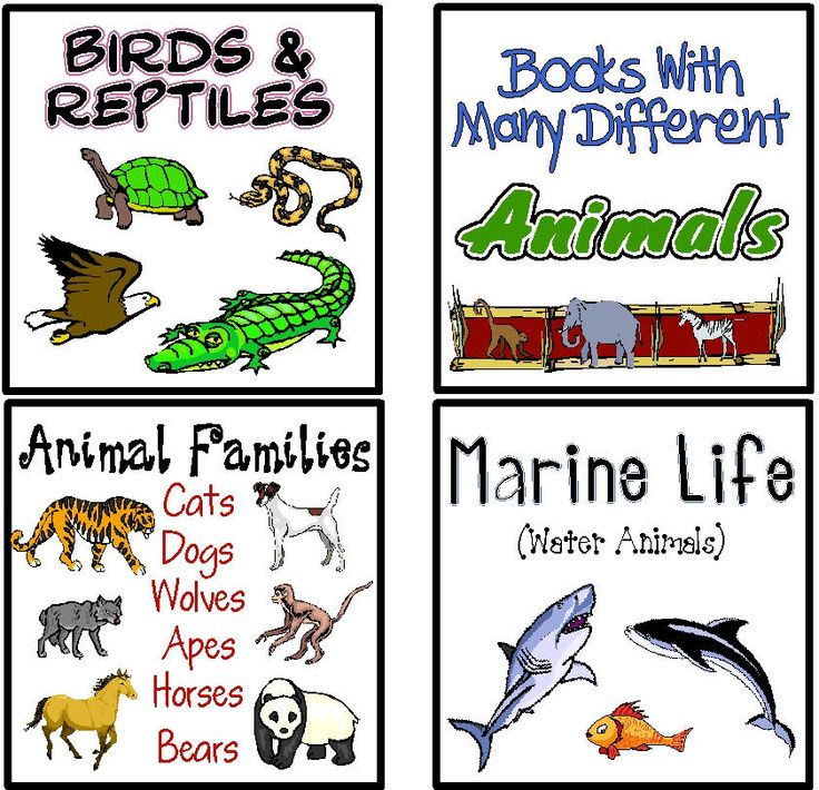 Printable Book Box Labels Classroom Library masterlist