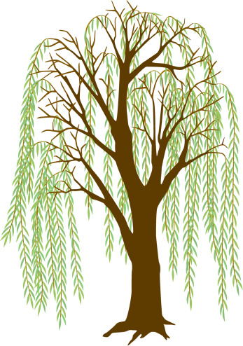 Free Willow Leaf Cliparts, Download Free Clip Art, Free Clip Art on