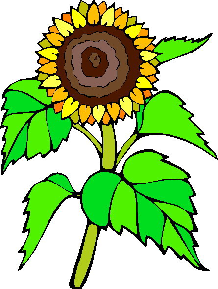 Sunflower clip art free printable free clipart - Clip Art Library
