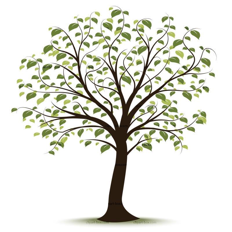 Family tree genealoy and backgrounds clipart Family History + - Clip