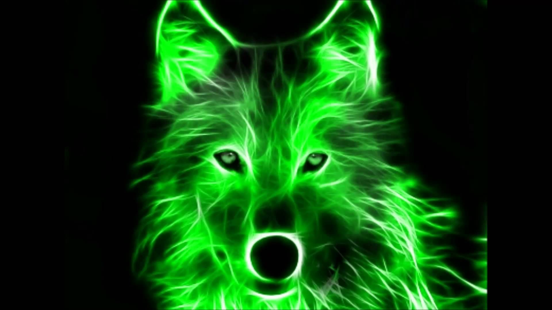 Coole Wolf Bilder Cool Pictures Cool Beats 3 Youtube Jpg Cliparting