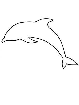 Dolphin Outline Related Keywords Dolphin Outline Long