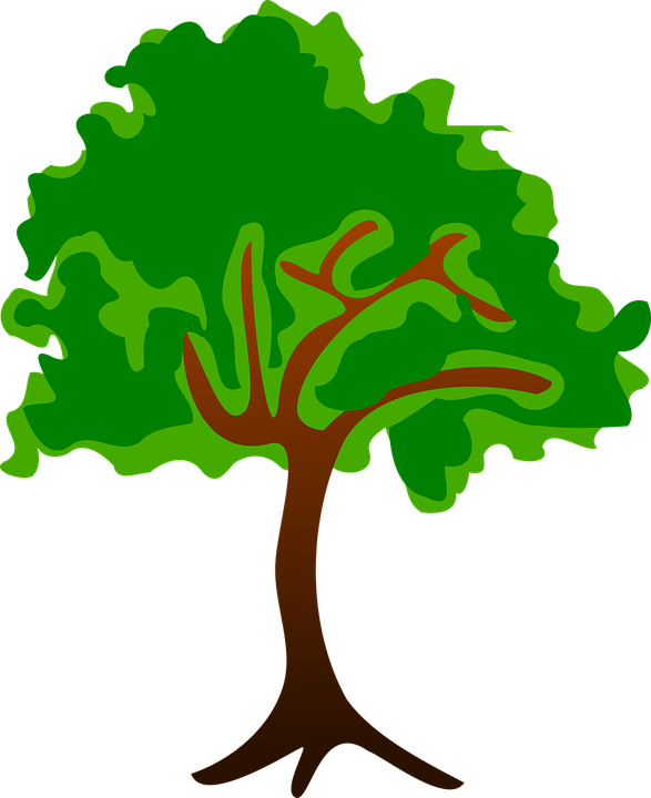 Avocado Baum Free Nature Clipart Pictures - Clipartix