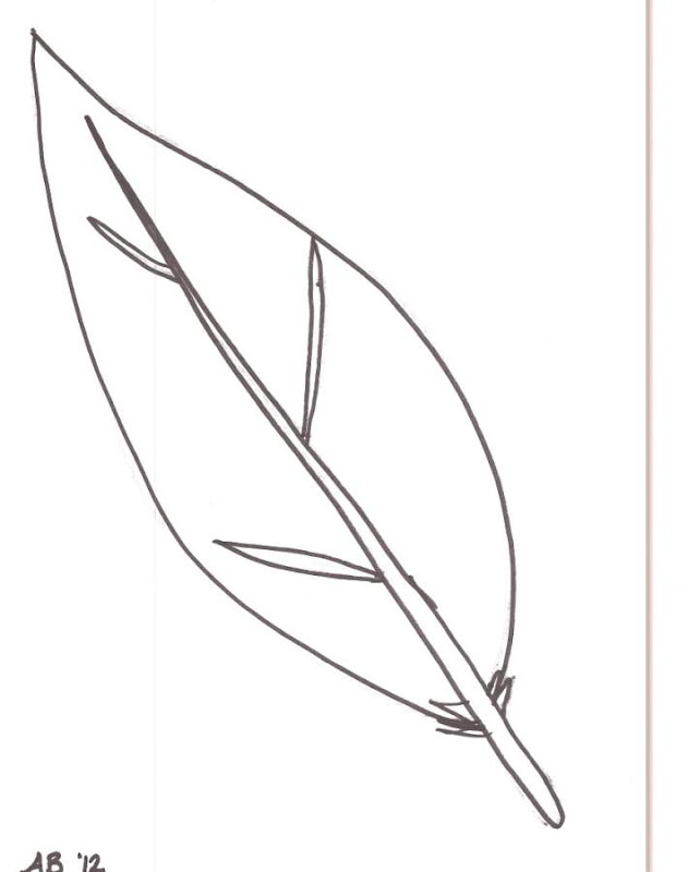 turkey feather Feather outline cliparts free download clip art jpg