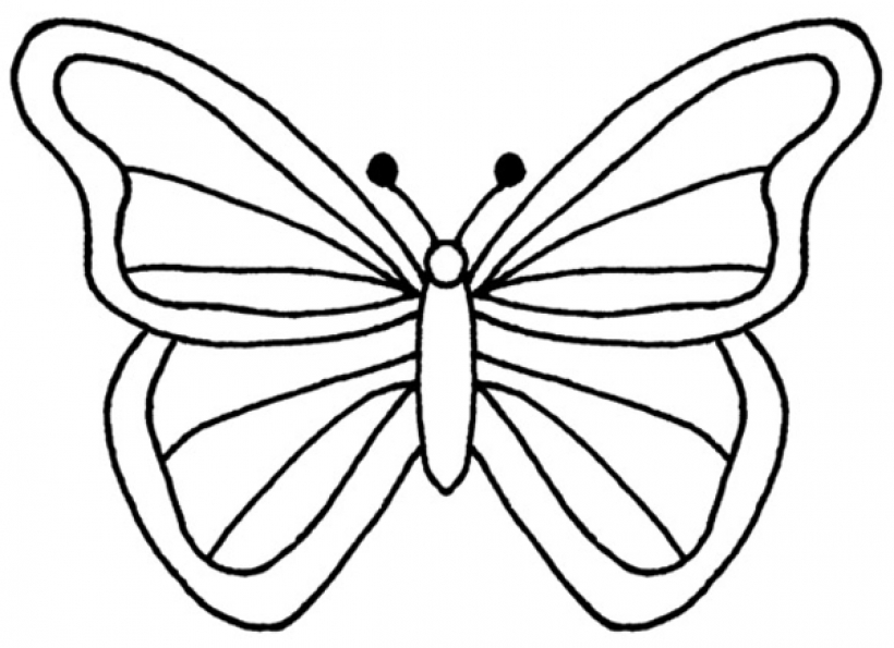 Butterfly Wing Outline Free download best Butterfly Wing Outline