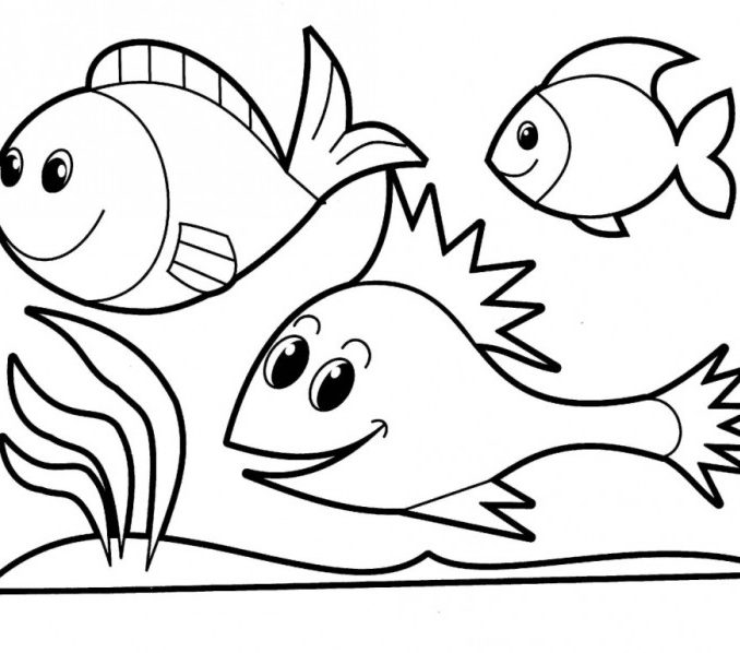 Fish Drawings Free download best Fish Drawings on ClipArtMag