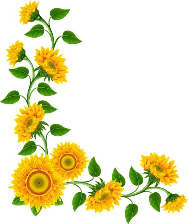 Free Flower Border Clipart Free download best Free Flower Border