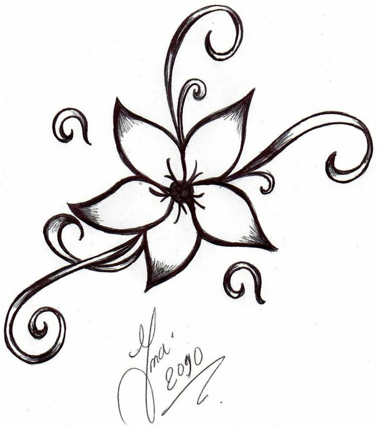 Line Drawing Of A Flower Free download best Line Drawing Of A