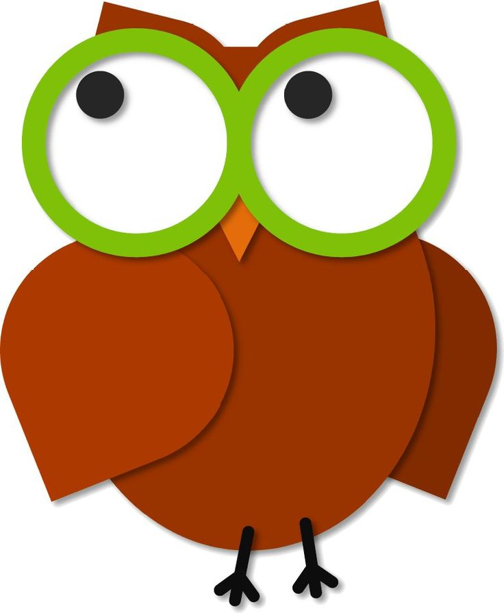 Owl Cartoon Png Clipart Free download best Owl Cartoon Png Clipart