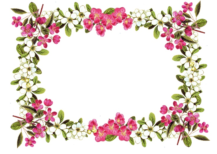 Free Printable Floral Borders And Frames - Cliparts